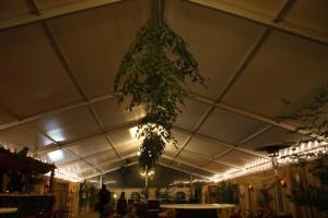 Im schönen VIP-Zelt